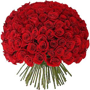 Букеты на 14 февраля - Букет из 101 красной розы